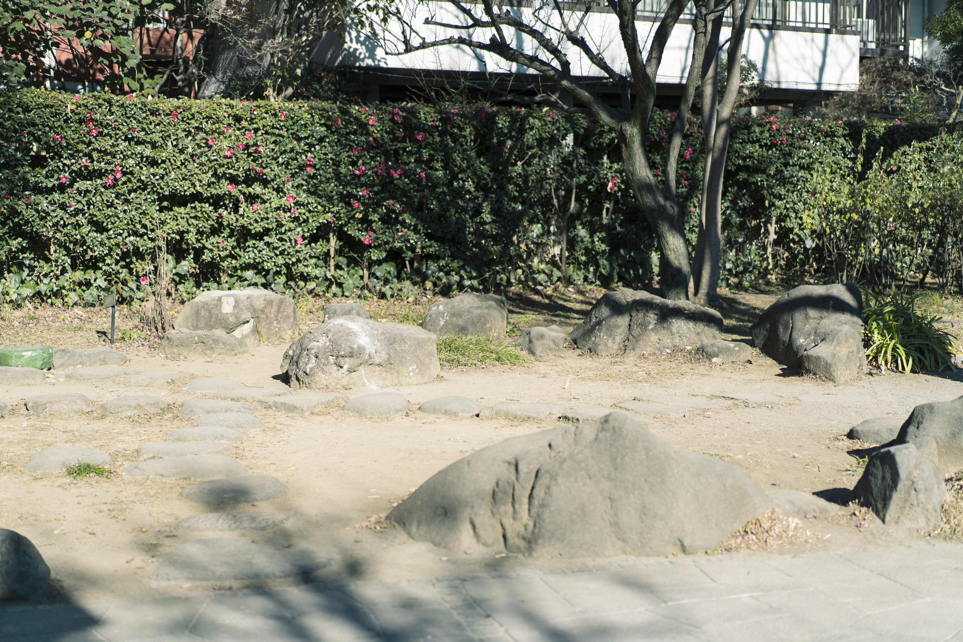 5.童橋公園